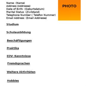 how to write a german cv lebenslauf mkenya ujerumani - Cv Lebenslauf