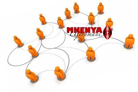 NetworkSocialCapital