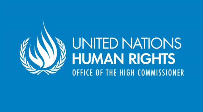 United Nations High Commissioner for Human Rights