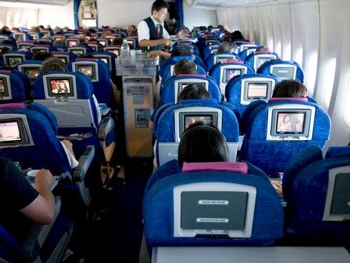 steward in flight