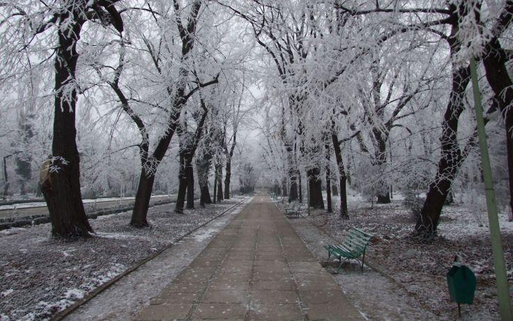 freezing winter snow
